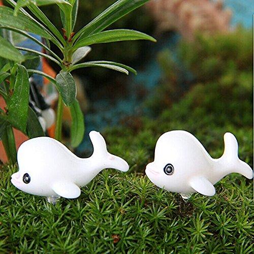 fairy garden-miniature animal figurines-miniature fairy garden accessories-DIY Miniature Lovely Dolphin Ornaments Potted Plant Garden Decor-decorative stones-ocean decor by Randall Elliott
