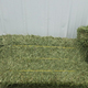 Top quality alfalfa hay for animal feeding stuff alfalfa / alfalfa Hay