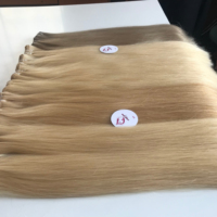 Wholesale Unprocessed Raw Virgin Vietnam Straight Color Hair Extension thick the ends