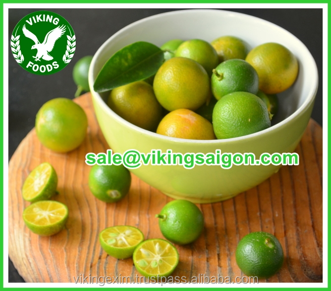 FRESH CALAMANSI FRUIT/CALAMANSI PUREE// CALAMANSI JUICE_FROM VIETNAM