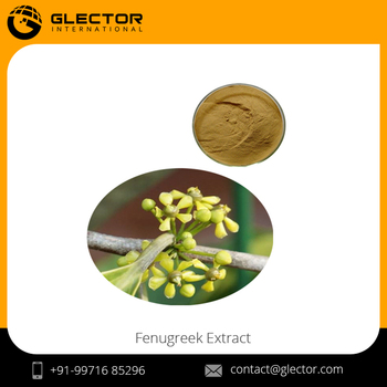 100 Natural Salacia Oblonga Extract 20 Buy Salacia Oblonga