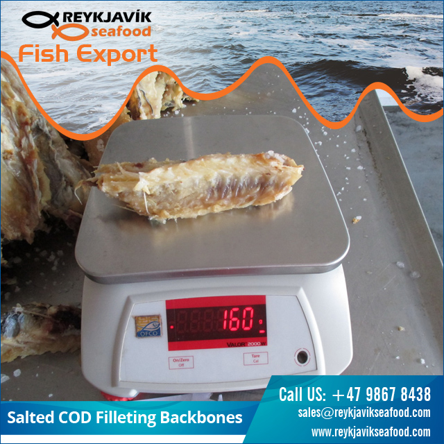Bulk Selling Salted Cod Fish Bone at Low Price
