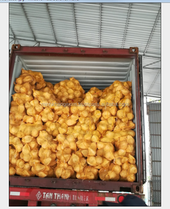 Dried Mature Coconut