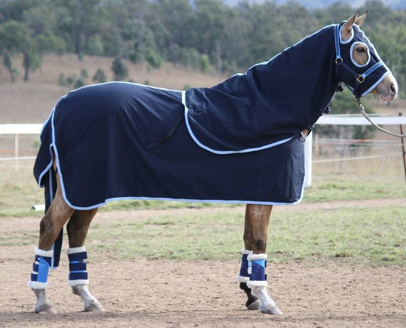 Cotton Horse Rug Attached Hood