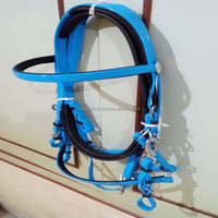 Hot Sell Comfortable Horse Bridle for Horse Racing