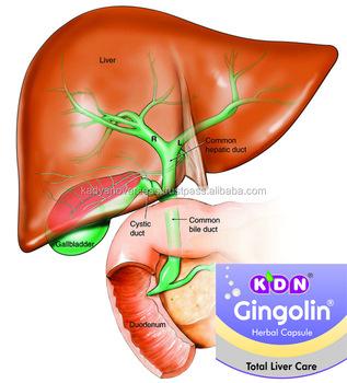 Chondroitinsulfat hilft bei der Behandlung von Gelenkschmerzen