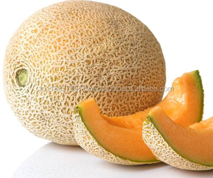 2018 Cheap Price High Quality Tunisian Fresh Sweet Melon