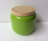 High quality best selling eco friendly green newest design canister made in Vietnam