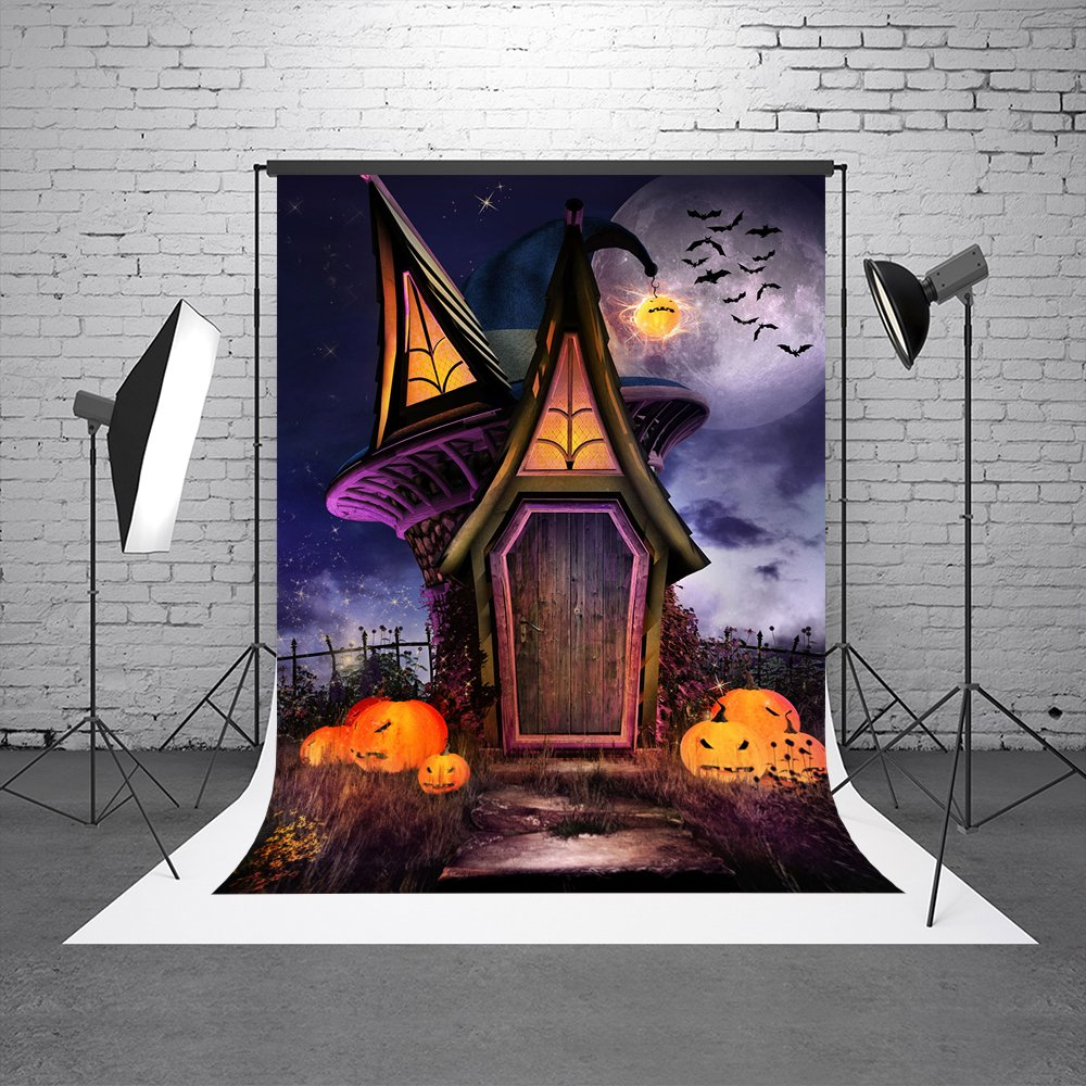 Kate 5X7ft (150cmX220cm) Old House Halloween Backdrops Spiderweb Wood Floor Wood Window Photography Background with Top Pocket
