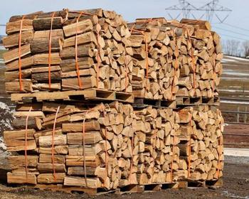 birch firewood kiln dried firewood in 40l bags