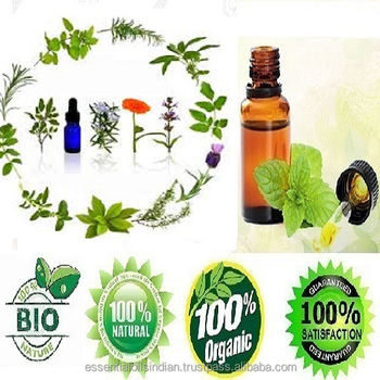 best processor of natural Nettle seed oil from india