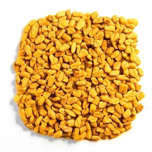Fenugreek - Buy Fenugreek Seeds,Indian Fenugreek Seeds,Fenugreek ...
