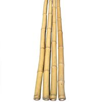 Straight dry natural cheap Vietnam Bamboo poles for agricultural