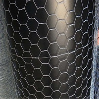 HEXAGONAL WOVEN IRON WIRE MESH FENCE