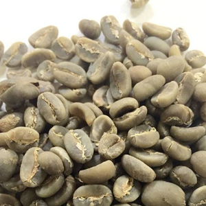 EUROPEAN GREEN ROBUSTA COFFEE BEANS FOR SELL
