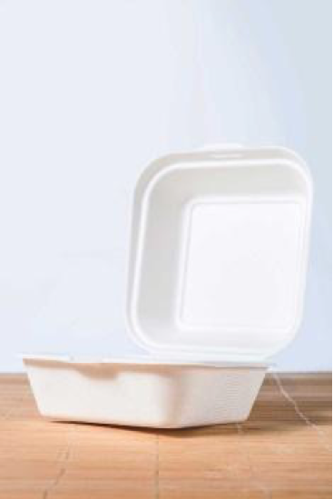 600ml Disposable Biodegradable White Sugarcane Single Compartment Container Sugarcane Takeaway Box