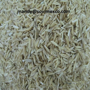 RAW RICE HUSK/ RICE HUSK BRIQUITTE VN WITH CHEAP PRICES