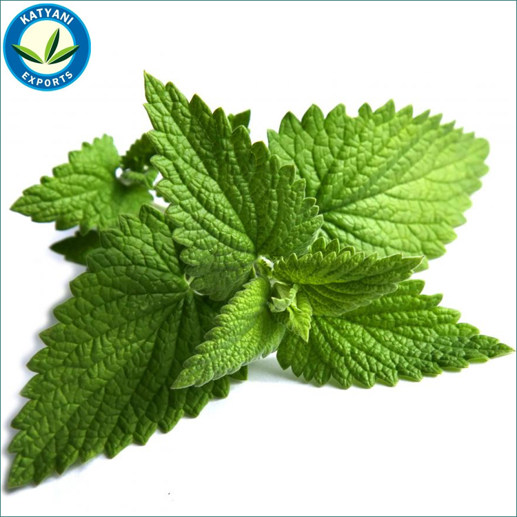 Peppermint Oil - 100% Pure & Natural