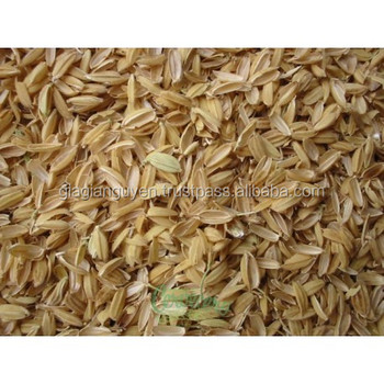 Rice husk grinding/ Vietnam rice husk/ Rice hulls before charring
