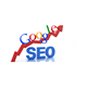 Best SEO Company in India Offers Professional SEO Services at Best Price