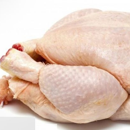 frozen whole chicken for sale with 40% Discount for Bulk Buyers