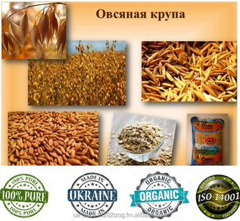 Oat Groats From Ukraine - Buy Oat Groats Product on Alibaba com