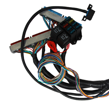 Ls1,5 3l/6 0l Engine Wiring Harness And Pcm Stand-alone Modification