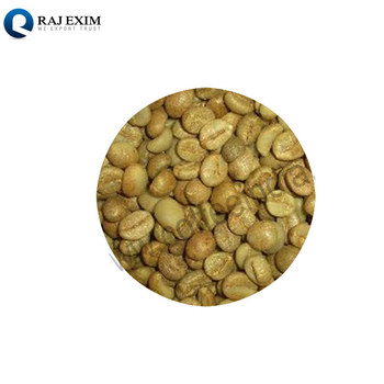 Factory Supplier Robusta Green Coffee Bean at Wholesale Price
