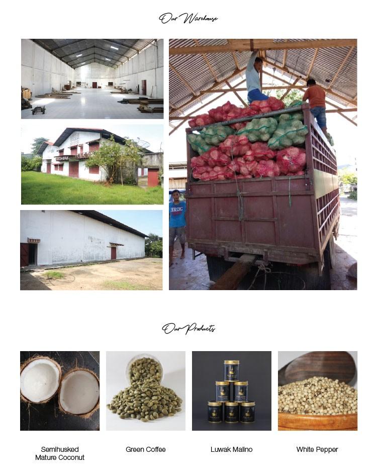 Toraja Arabica Coffee Export Quality - Buy Arabica Coffee ...