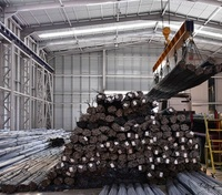 hot rolled deformed steel bar/rebar steel/iron rod for construction Rebar 8 mm to 32 mm. 12 mt. ( S420 B500B TS 708 standart)