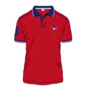 Men' Polo Shirt