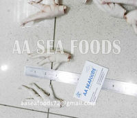 Manufacturing/Grade A Chicken Frozen feet Processed and export