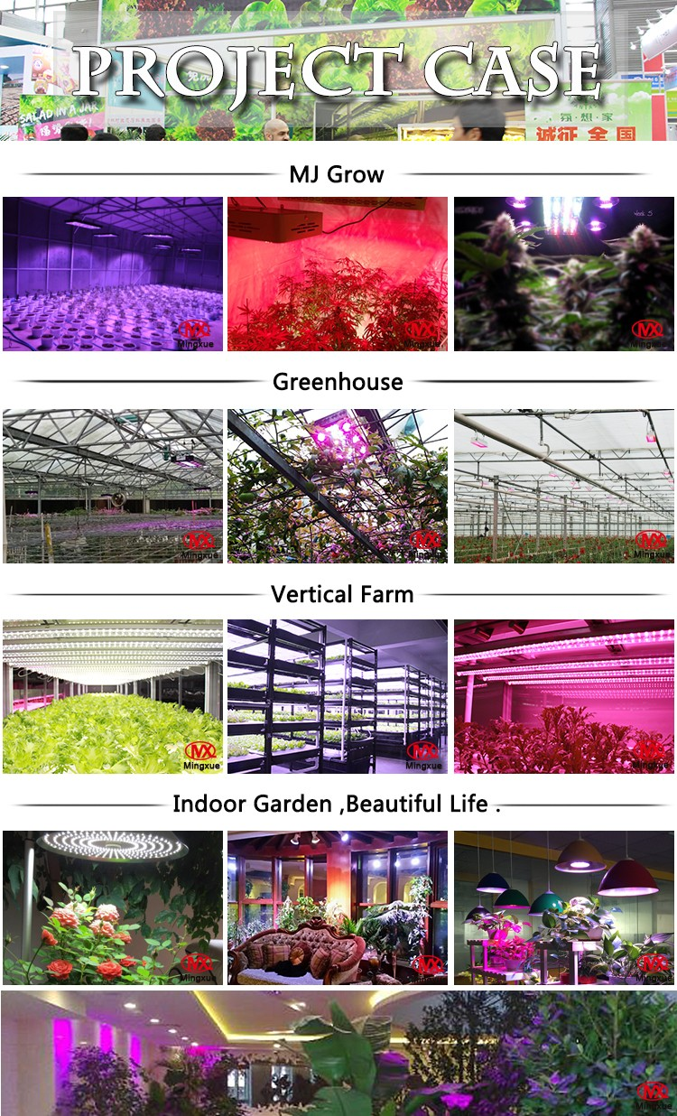 Dropship High Power Horticulture Lighting Grow Light 660Nm Led