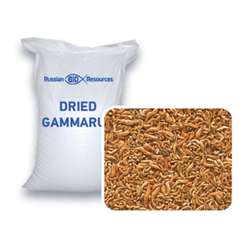 Dried Gammarus - natural fish feed
