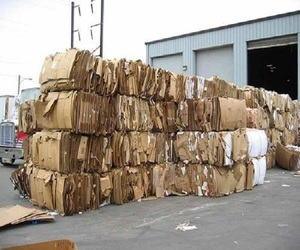 July Waste Old News Papers, OCC Waste Paper/OCC Waste Paper in Bales