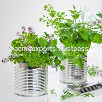 Galvanized Herb Planter | Galvanized Hanging metal flower planters for home