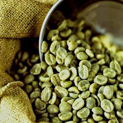 Green coffee is good for thyroid patients