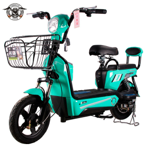 Electric bike moped 350W for adults 48v12ah li-ion battery