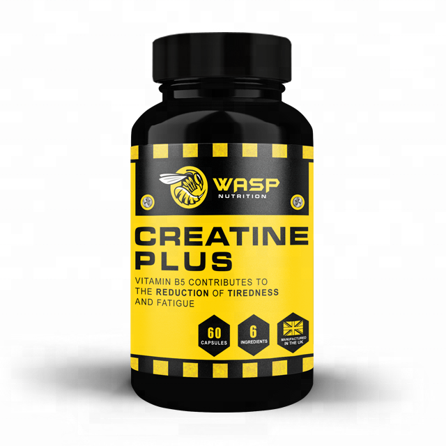 Wasp Nutrition Creatine Plus Sports Food Diet Supplement Capsules - Premium Bottle - Private Labelled Wholesale