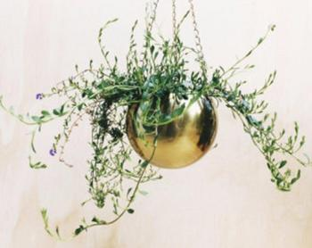 Brass Hanging Planter,Decorative Planter,Indoor Hanging Planter - Buy  Indoor Large Decorative Planters,Indoor Planters,Large Indoor Planters  Product