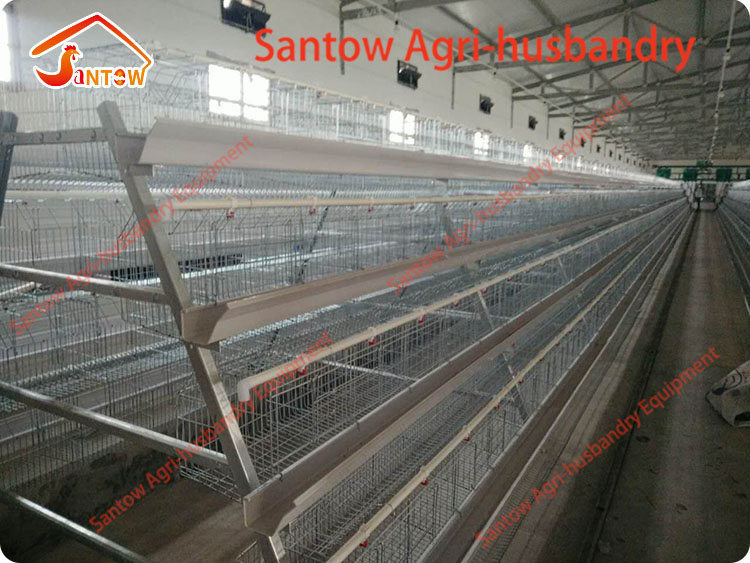 Hot Galvanized Chicken Layer Cages Cold Galvanized Chicken Poultry Battery Cage For Nigeria Top Quality
