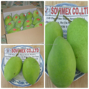 Buyers For Mango Fruits, Buyers For Mango Fruits Suppliers and