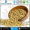 Wholesale prices of High quality natural coriander seeds