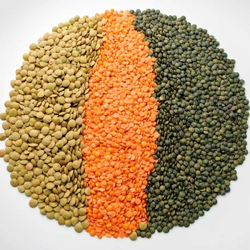 Quality Red Lentils / Green Lentils