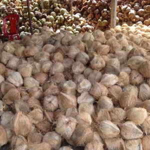 Fresh Coconuts Import, Fresh Coconuts Import Suppliers and