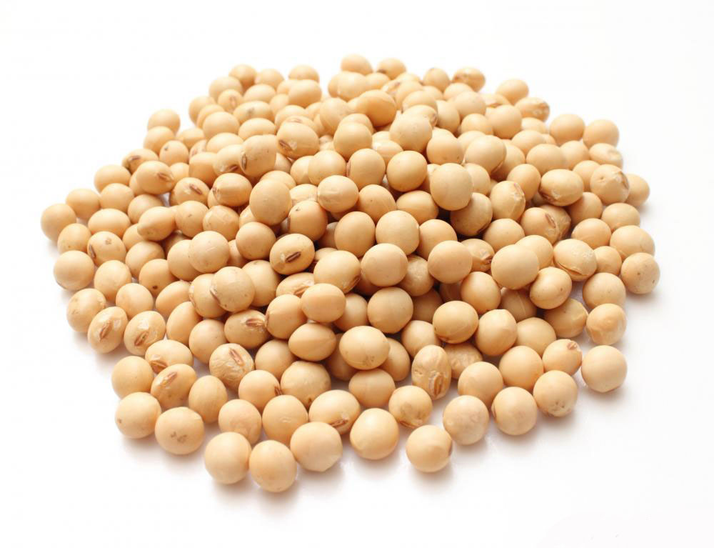 Pure Organic Soybean / Soya bean from Africa available