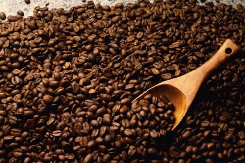 Roasted Arabica Coffee Beans / Robusta Coffee Beans