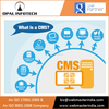 Custom CMS Website Builder and CMS Web Design at Most Competitive Cost