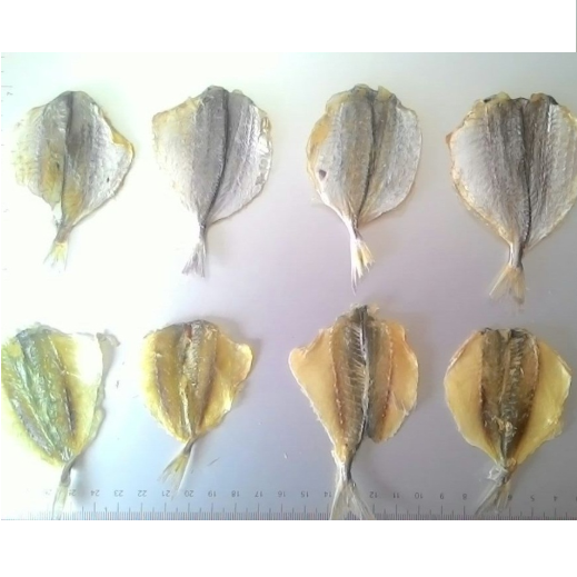 Dried Trevally.png