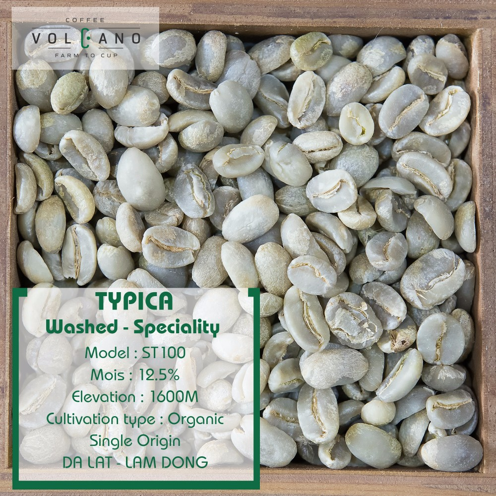 Vietnam Arabica Coffee Green Beans Price For Raw Buy Vietnam